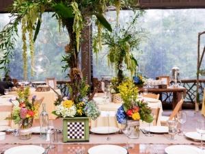 vineyard-mountain-destination-wedding-429