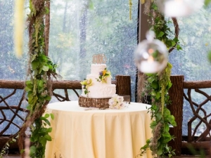 vineyard-mountain-destination-wedding-451